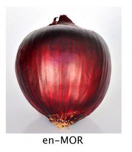 sogan_cesidi_mor